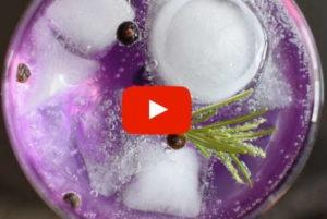 Gin Tasting Düsseldorf Erlebnisgutschein